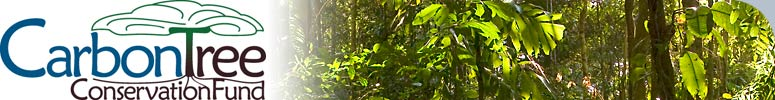 CarbonTree Conservation Fund page banner with logo